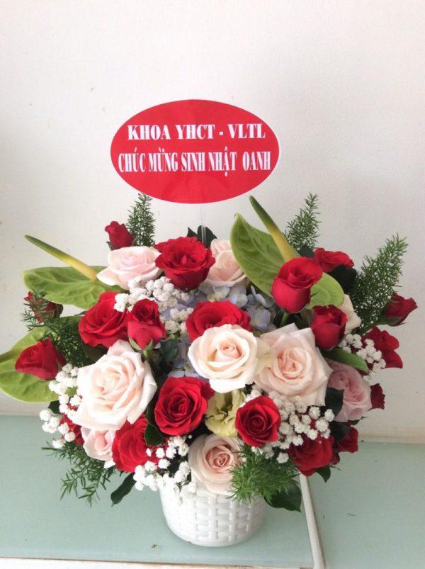 hoa sinh nhật sn 10