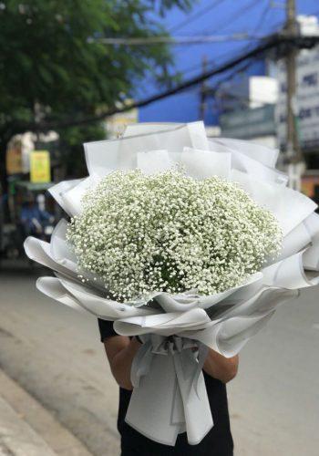 hoa tình yêu ty 06