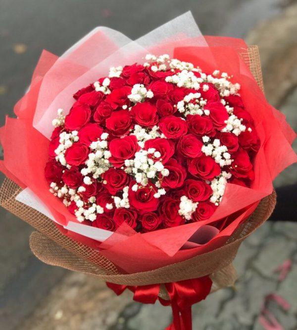hoa tình yêu ty 12