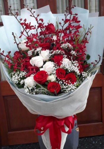 hoa tình yêu ty 14
